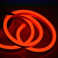 Christmas led neon flex light 8 colors option 12v 24v red led neon flex tube
