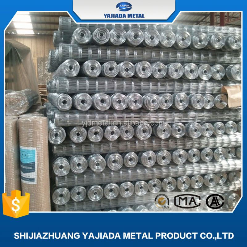 electro cage galvanized welded wire mesh/hotdipped