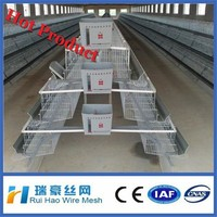 chicken egg layer cages/design layer chicken cages