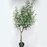 2017 New Products Artificial Plastic Olive Tree