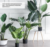 Hot sell Nordic sense potted green artificial plants