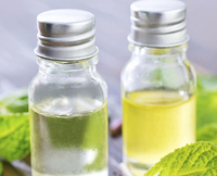 Chinese Peppermint Oil/ Peppermint Oil USP