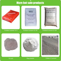 Hot sale cheap price portland cement 32.5 /42.5 /52.5 /clinker /fly ash /slag powder