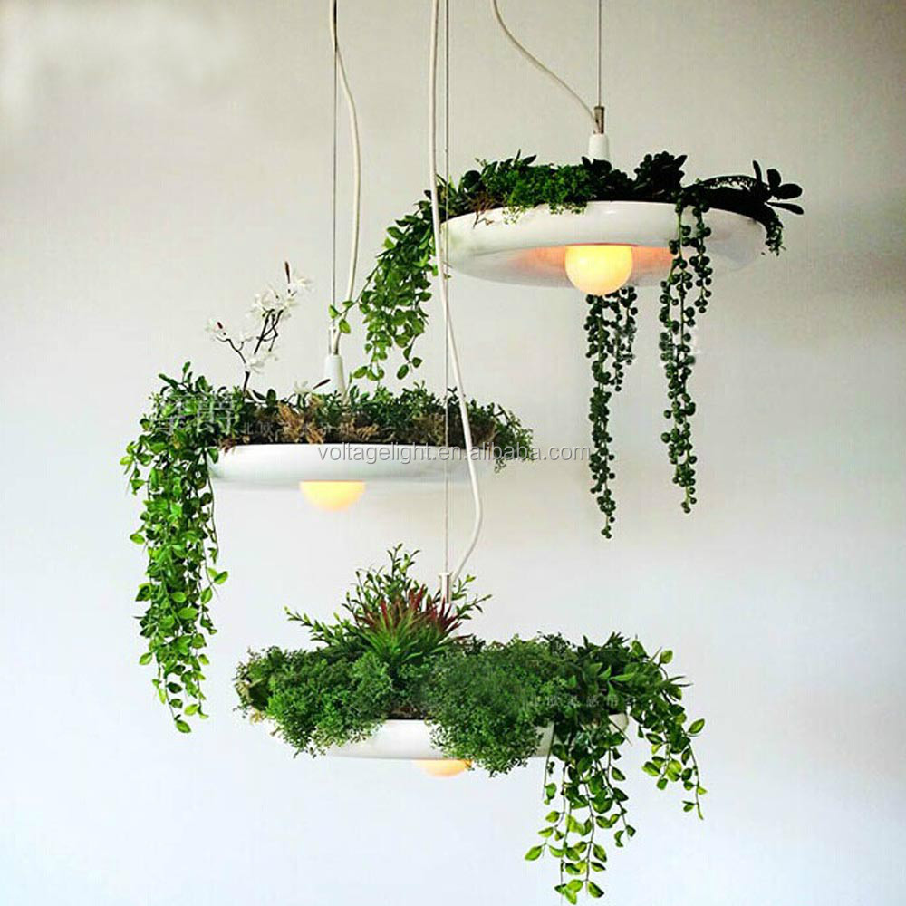 Decorative hanging pendant lighting with fresh plant for Plante pendante