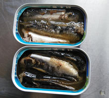 125g Canned Sardine from indonesia