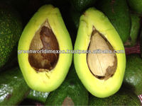 FRESH AVOCADO_LOWEST PRICE