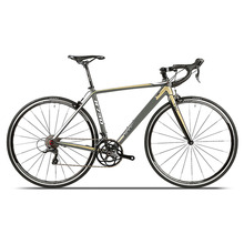 New design China cheap AL7005 aluminum alloy road bike from fist bicycle company