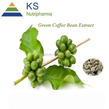 Herbal powder weight loss green coffee bean extract free sample