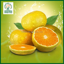 Green fruit names orange fruit price
