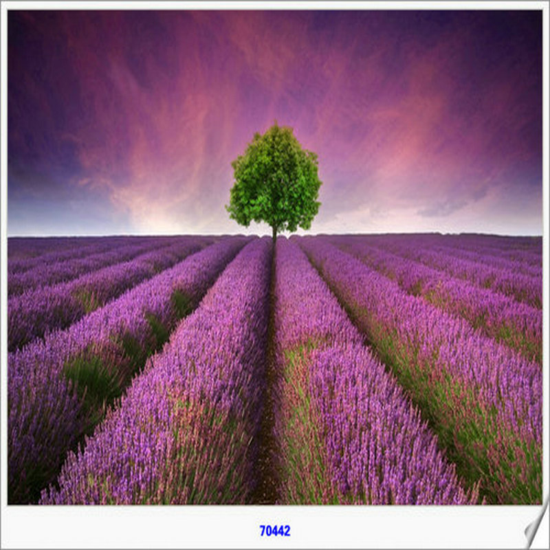 Yiwu foctory supply framed artwork with resin stone drilled Lavender farm 5d 2.5mm diamond painting