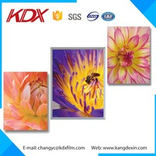 New Fashion Design 3D Lenticular Lens Film Adhesive Sticker Photo Cold Lamination Film,APET 3D Lenticular Sheet