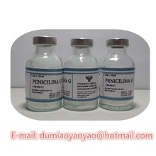 cattle medicine Penicillin G powder for injection with low price for veterinary drugs&medicine
