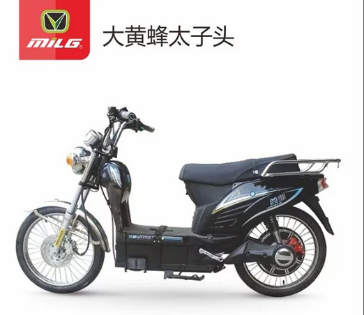 2017 Very popular high quality big cargo loading capacity electric bicycle 60v 450w with CE