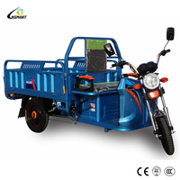 Best-selling 20 inch steel frame pedal adult delivery cargo tricycle with basket