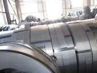 Hot dipped galvanized steel coil strips/HDG/GI/HDGI/slitted coils/HDGI strips