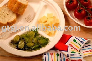 disposable biodegradable tableware(plate,dish,tray,box,bowl,cup,cutlery)