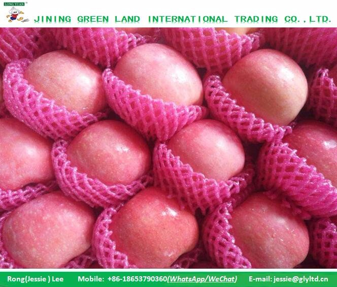 SUPPLY CHINA WILD CLEAN FUJI APPLE VARIETY OF PACKAGES FOR YEARS