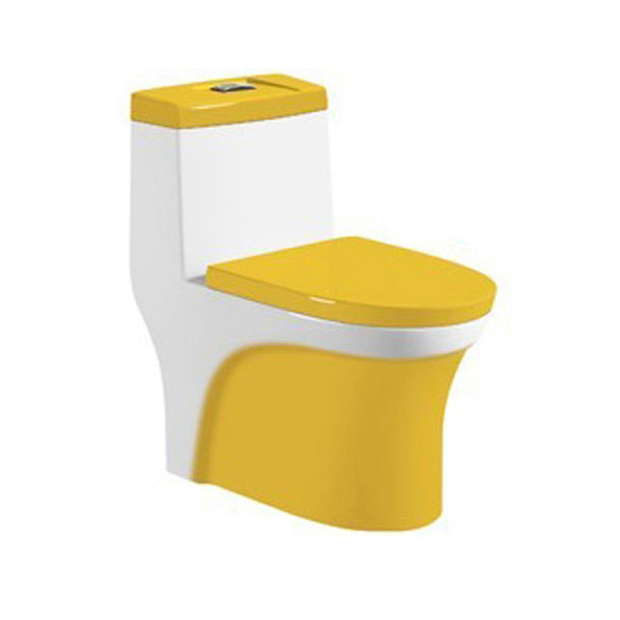 One Piece Dual Flush Washdown Bowl Toilet