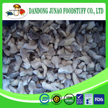 Chinese purchase A grade frozen chunk oyster mushroom 2015corp