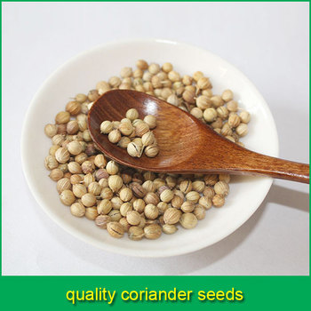 coriander seed best price