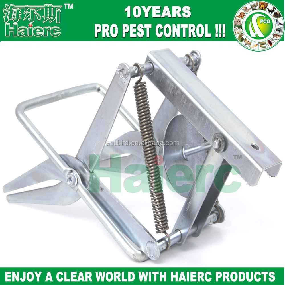 Haierc Sliver Easy Set Mole Eliminator Trap,Galvanized Steel Mole and Gopher Trap