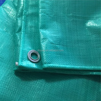 2 meter wide heavy cheap waterproof polyester fabric pe tarpaulin in standard size