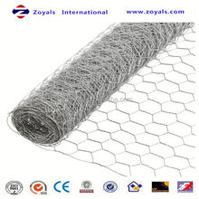 Specialized ISO manufacturer anping galvanized hexagonal chicken wire mesh