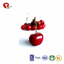 TTN 2017 China Sales Dried Red Cherry