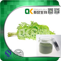 High Quality 100% Natural Moringa Leaf Extract Herbal Extract Powder in bulkHigh Quality 100% Natural Moringa Leaf Extract Her