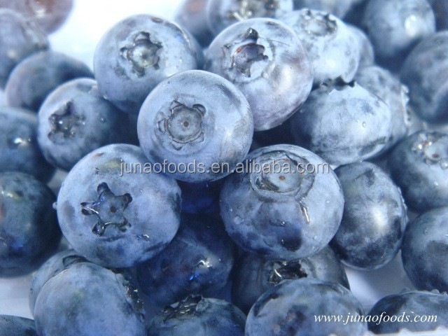 Wholesale frozen pure and natural dried organic blueberry fruit