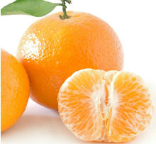 list of yellow fruits egyptian orange exporters fresh mandarin orange