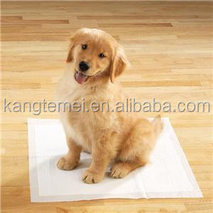 Training Pads / Puppy Pads