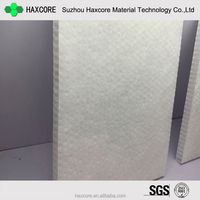PP Plastic Honeycomb Core panel