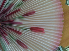 Colorful pleated window screen/printed pleated screen/color pleated screen