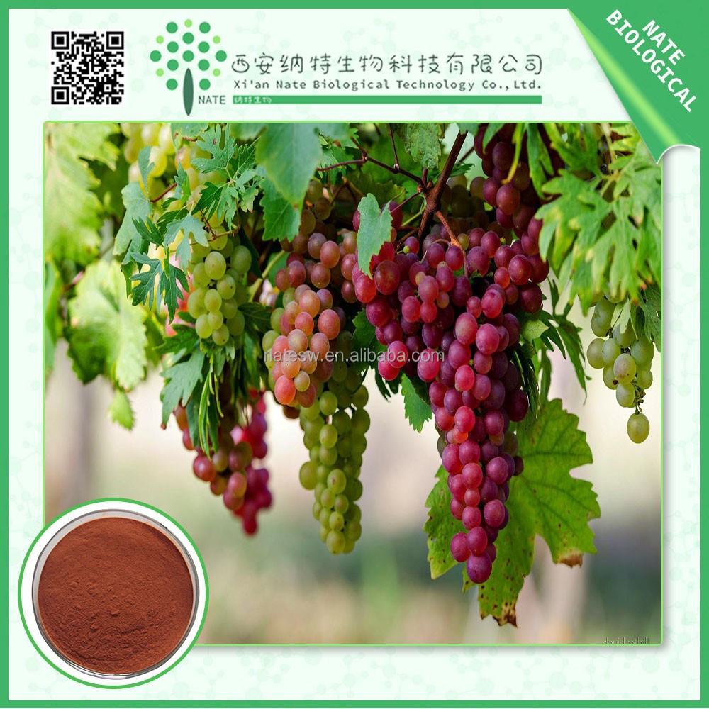 healthcare product Grape Seed Extract powder OPC 95% Polyphenols 40%Free Sample