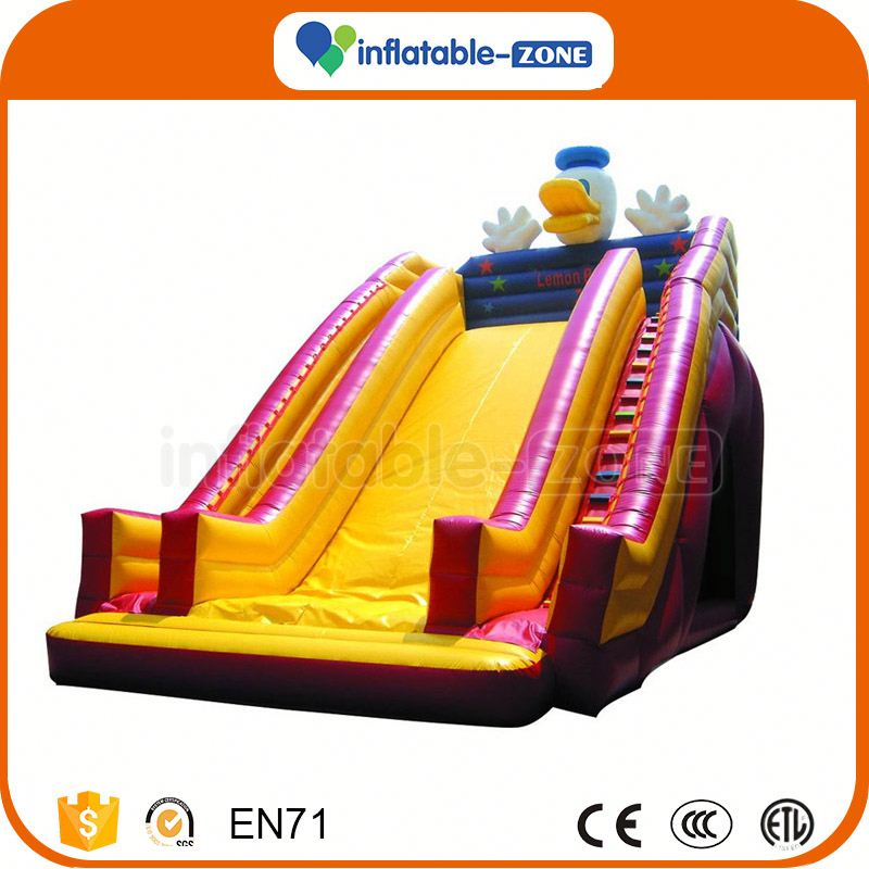 Hot Selling inflatable tiger slide inflatable wet and dry slide