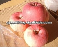 2014 market red fuji apple for sale ,China