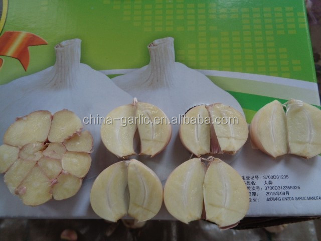 Fresh Style Chinese natural garlic 200g or 250g per net bag