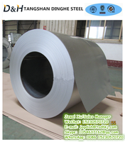 Tangshan Dinghe Dx51D Z80 Hot Dipped Zinc Coated Galvanized Steel Coil and Strip