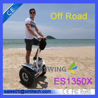 Adult high speed 48V lithium electric scooter/electric motorcycle /electric vehicle with local plug and adopter