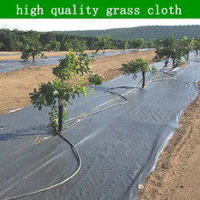 Best selling product pp or pe ground cover net agricultural use,weed control net