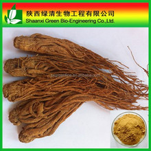 100% Natural Dong Quai Extract, Black angelica extract, Angelica Sinensis extract