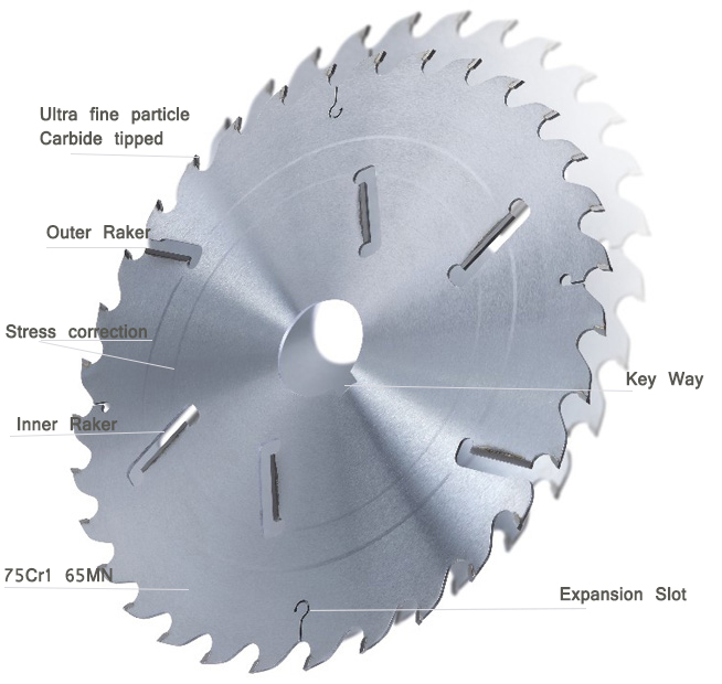 TCT multi saw blades with rakers for crosscutting wet wood