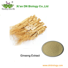 Herbal Medicine Ginseng Red Panax Ginseng Extract low pesticides Residues- panax ginseng root