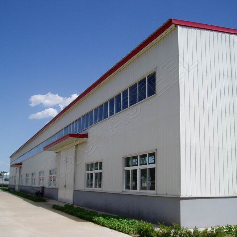 steel structure warehouse/pre engineered metal building