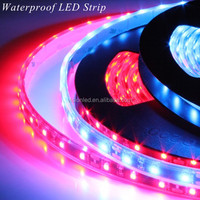 Hot Sale Flexible CRI90 SMD 3528 LED Strip