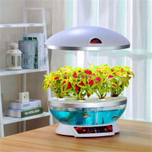 plastic aquarium fish tanks