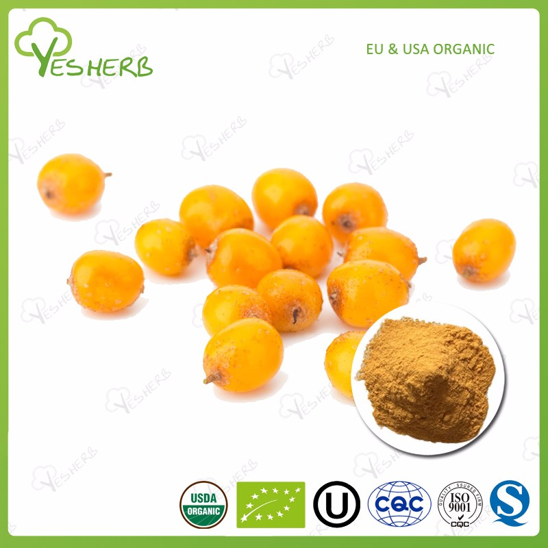 Manufacturer supply freeze dried sea buckthorn powder