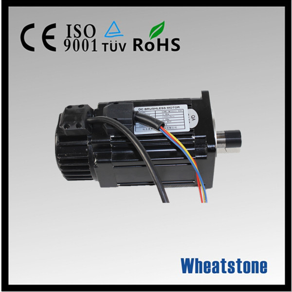 48v high quanlity dc brushless electric motorcycle motor
