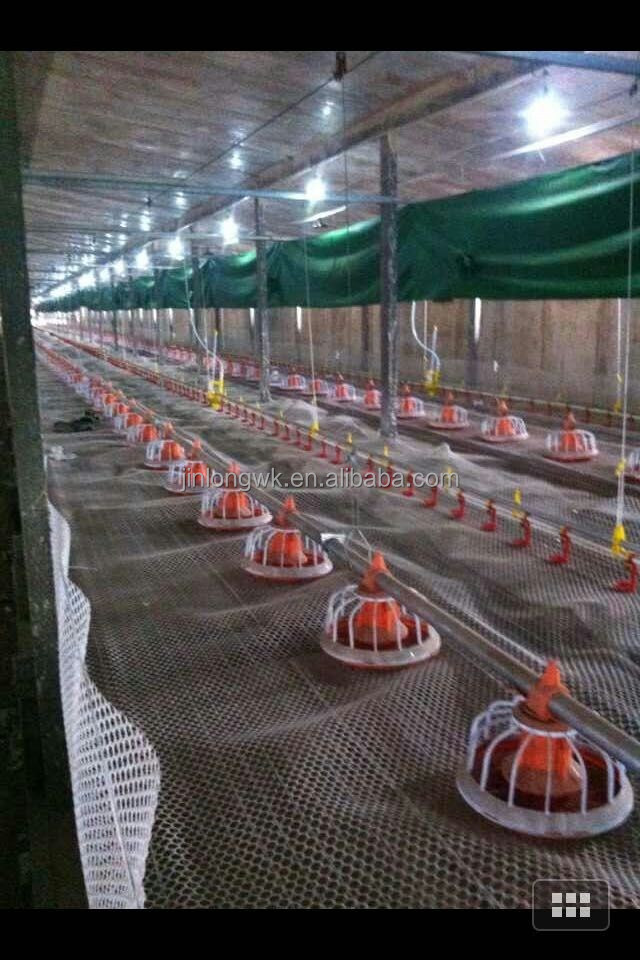 JinLong poultry equiment chain feeding line for chicken farm